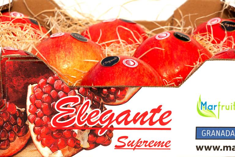 GRANADA-ELEGANTE-SUPREME-3