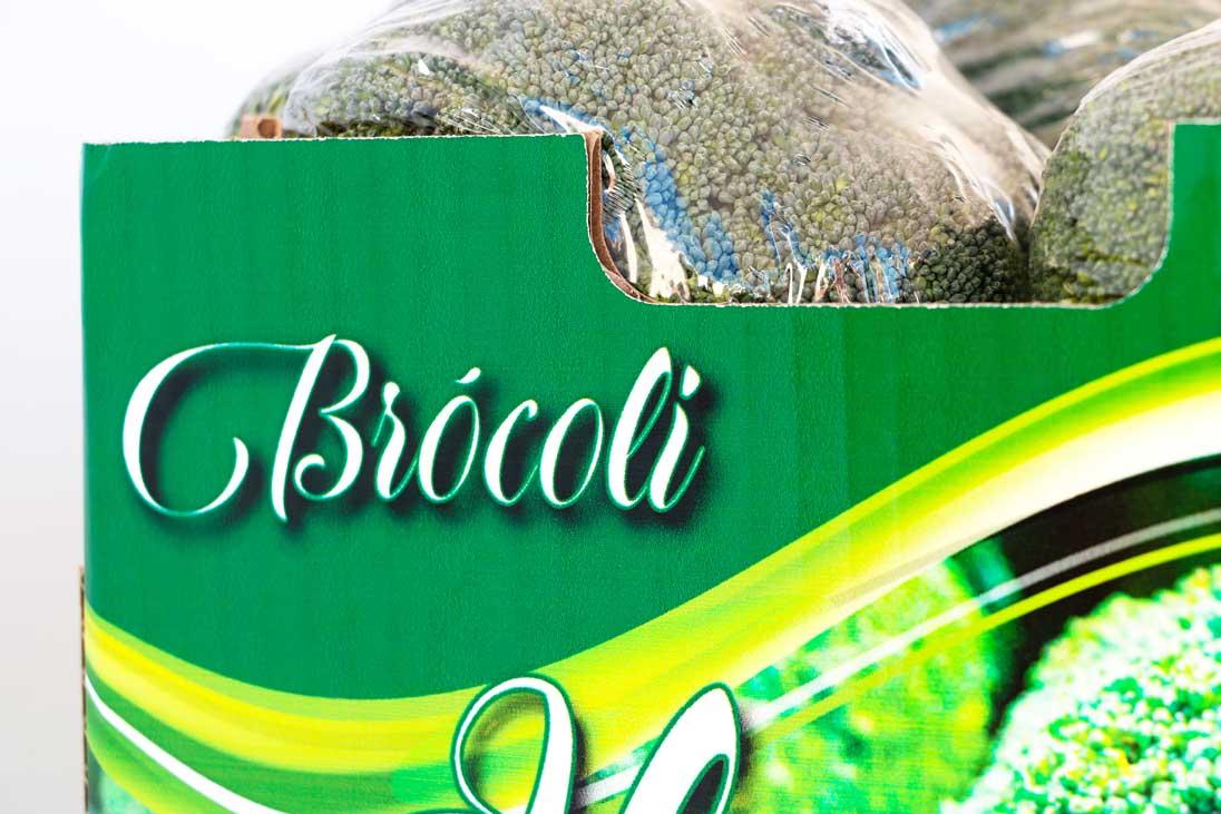 4CAJA-BROCOLI-ELEGANTE-10P