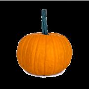 calabaza halloween ok