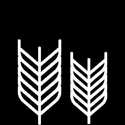 espigas-seccion-7